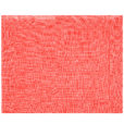 PLACEMAT <br />coral